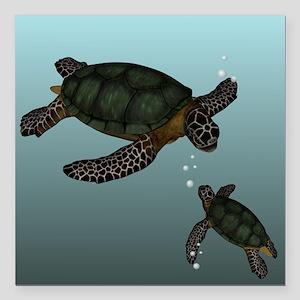"""Sea Turtles Square Car Magnet 3"""" x 3"""""""