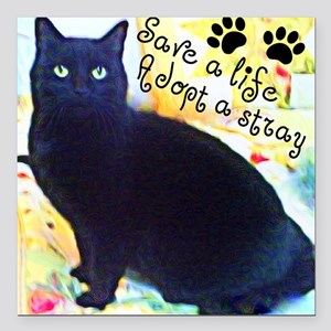 "Stray Black Kitty Square Car Magnet 3"" x 3"""