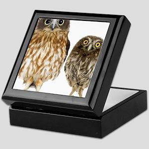 Owl Duo Keepsake Box