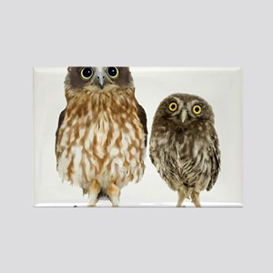 Owl Duo Rectangle Magnet