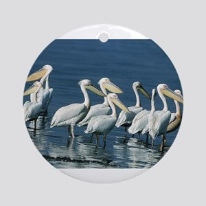 Pack of Pelicans Ornament (Round)