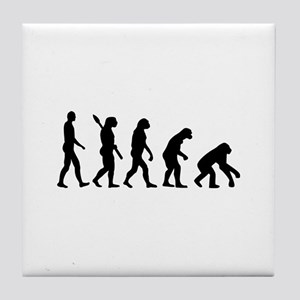 Evolution backwards Tile Coaster