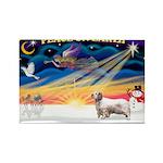 XSunrise-Clumber Spaniel Rectangle Magnet (10 pack