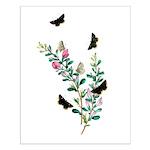 Butterflies of Summer Small Poster