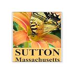 Sutton Massachusetts Butterfly Square Sticker 3