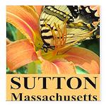 Sutton Massachusetts Butterfly Square Car Magnet 3
