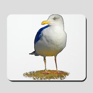Sea Gull Has His Eye on You Mousepad