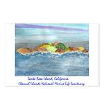 Santa Rosa Island cinmls product Postcards (Pa