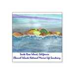 Santa Rosa Island cinmls product Square Sticke