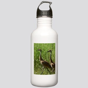 Sandhill Crane Stainless Water Bottle 1.0L