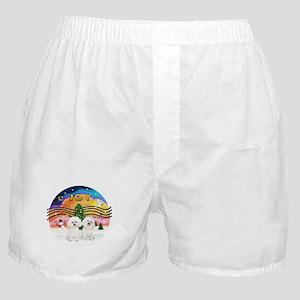 XMusic2 - Two Bichon Boxer Shorts
