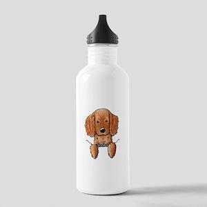 Pocket Irish Setter Pup Stainless Water Bottle 1.0