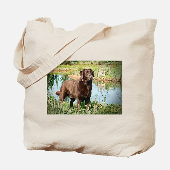 Chocolate Labrador Ready for the Hunt Tote Bag