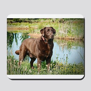 Chocolate Labrador Ready for the Hunt Mousepad