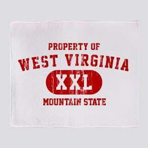 Property of West Virginia, Mountain State Stadium