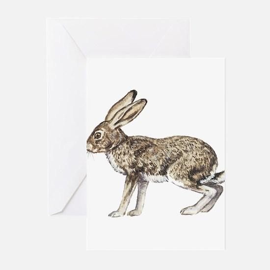 Jack Rabbit Greeting Cards (Pk of 10)