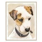 Parson Jack Russell Terrier Small Poster