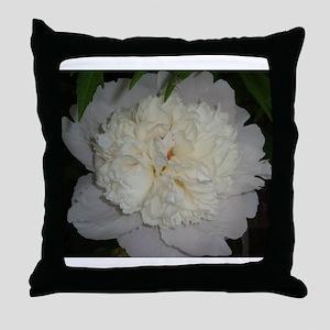white common peony, weiße Pfingstrose Throw Pillow