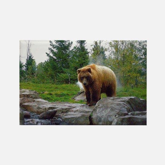 Grizzly Rectangle Magnet