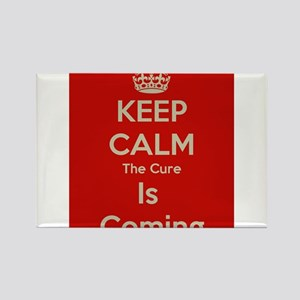 Keep Calm Rectangle Magnet