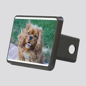 Buddys Smile Rectangular Hitch Cover