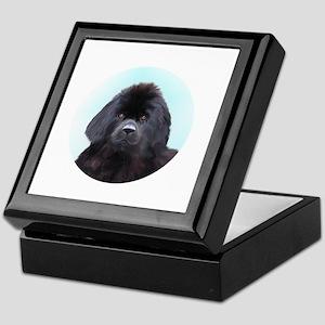 Newfoundland Dog Head Shoulders Keepsake Box