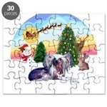 TakeOff-Crested #9 Puzzle