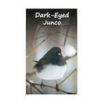 Dark-Eyed Junco Watercolor Sticker (Rectangle)