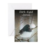 Dark-Eyed Junco Watercol Greeting Cards (Pk of 10)