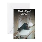Dark-Eyed Junco Watercol Greeting Cards (Pk of 20)