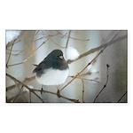 Dark-Eyed Junco Watercol Sticker (Rectangle 50 pk)