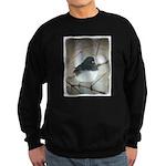 Dark-Eyed Junco Watercolor Sweatshirt (dark)