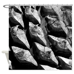 Pine Cone Photograph Shower Curtain