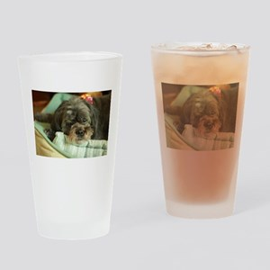 indoor dogs Drinking Glass