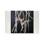 gymnastic dance art Rectangle Magnet (100 pack)