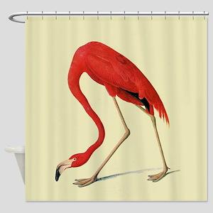 Audubon American Flamingo Shower Curtain