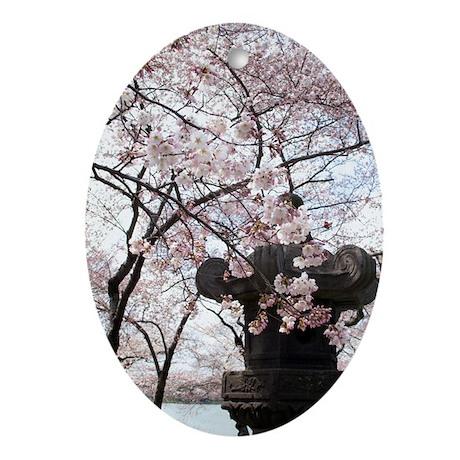 Peak Bloom Cherry Blossom around Japanese Stone la