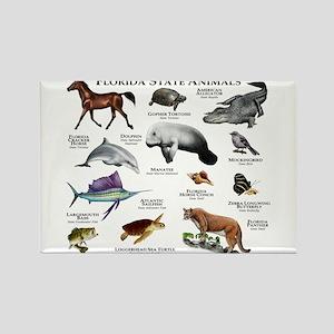 Florida State Animals Rectangle Magnet