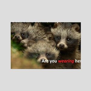 Anti-Fur Raccoon Dog pups Rectangle Magnet