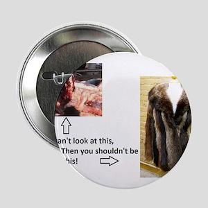 "Fur Shame 2.25"" Button"