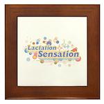 MM Lactation Sensation Framed Tile