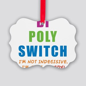 BI-POLY-SWITCH_NEW Picture Ornament