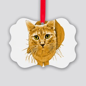 orange-kitty Picture Ornament