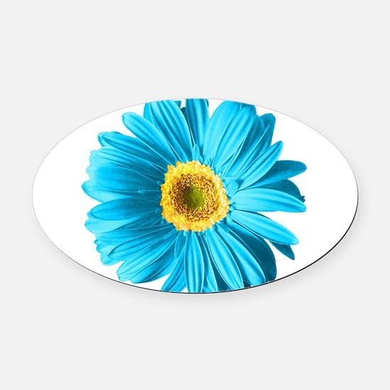 pop-daisy_bu.png Oval Car Magnet