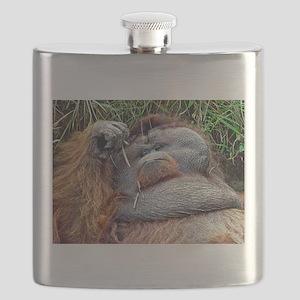 Life of Riley - Orangutan Flask