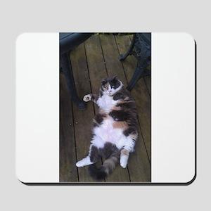 WHO ME? NEVER! Mousepad