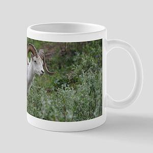 Dall Sheep Mug