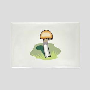 Mushroom Rectangle Magnet
