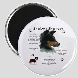 Sheltie 4 Magnet