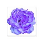 Mystic Indigo Rose Square Sticker 3